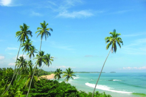 Шри-Ланка - недорого и красиво!