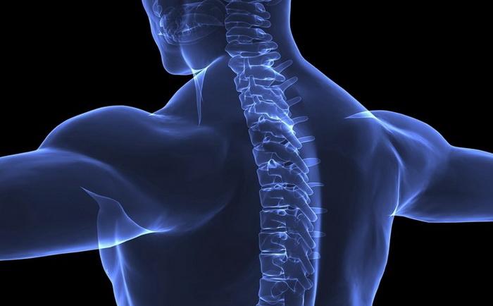 полисегментарный остеохондроз шейного отдела позвоночника