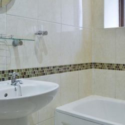 Откуда мокрицы в квартире и как от них избавиться?