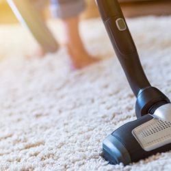 16 лучших средств от пылевых клещей в доме