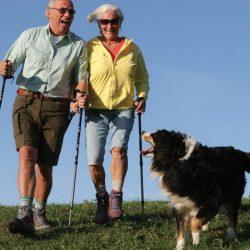 Почему пожилым рекомендуют скандинавскую ходьбу — польза и правила