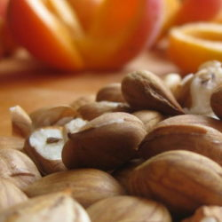 Ядра абрикосовых косточек  — полезны или вредны? Правила приёма